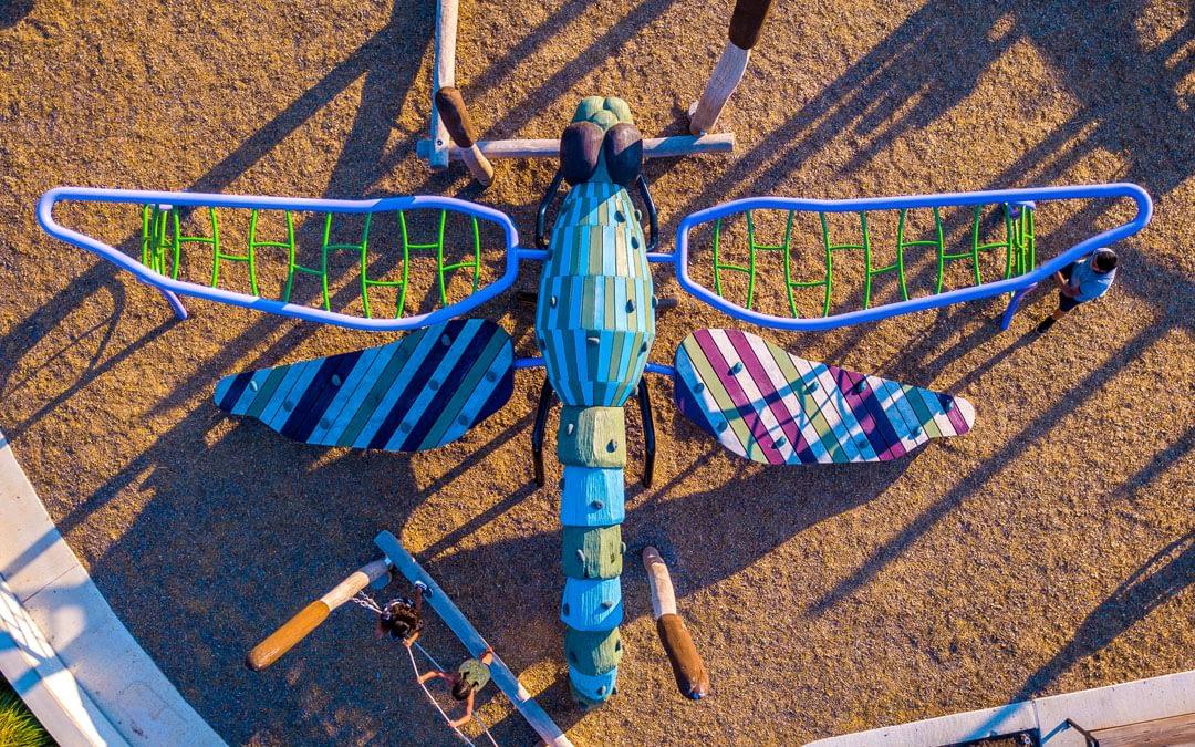 dragon fly bridgeland park