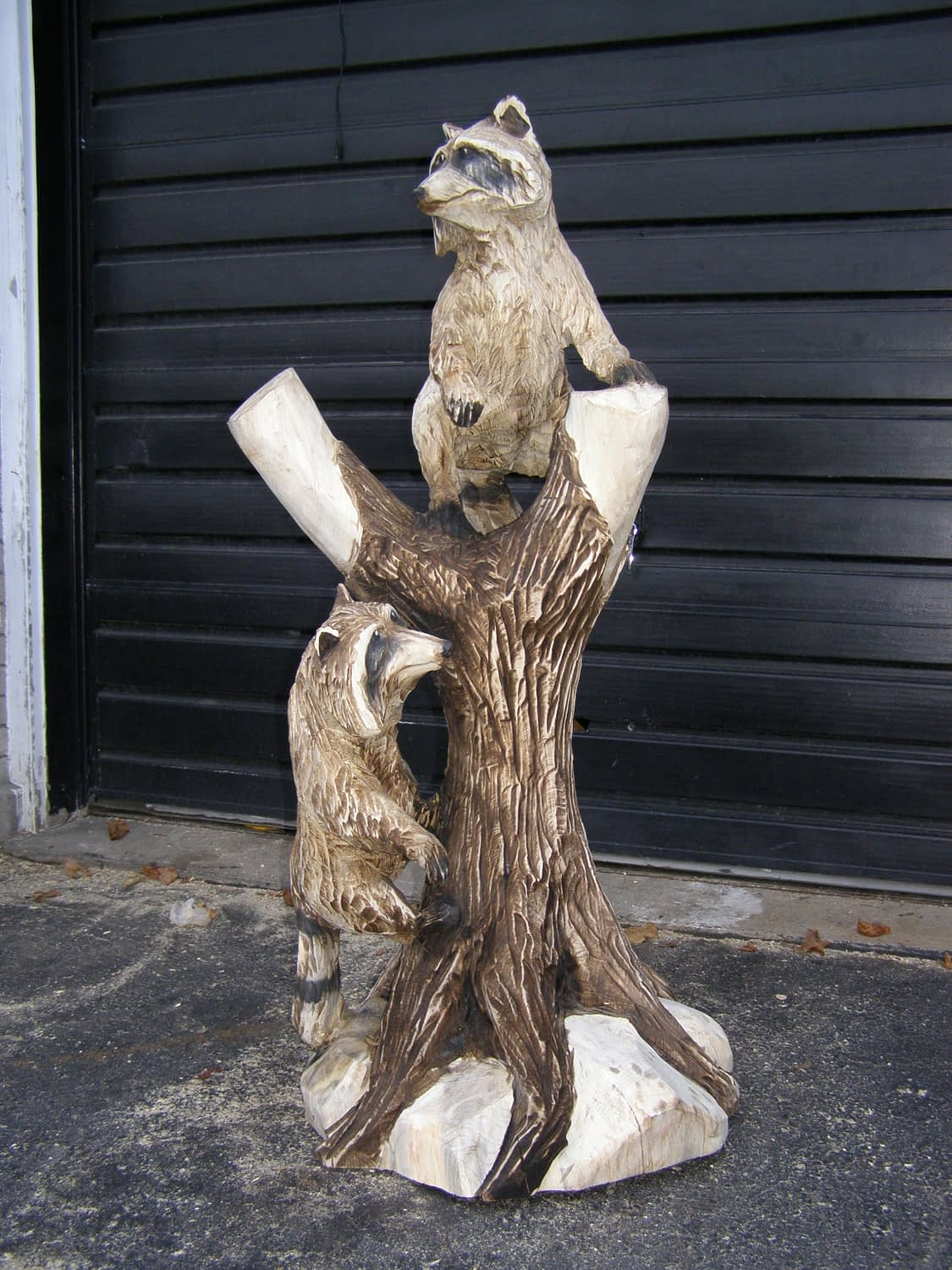 Carving, Racoon, Tree