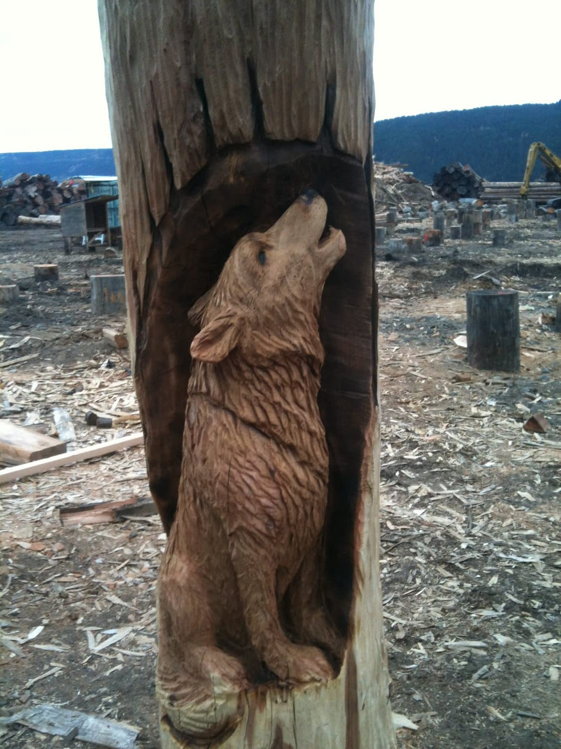 Wood, Carving, Wolf