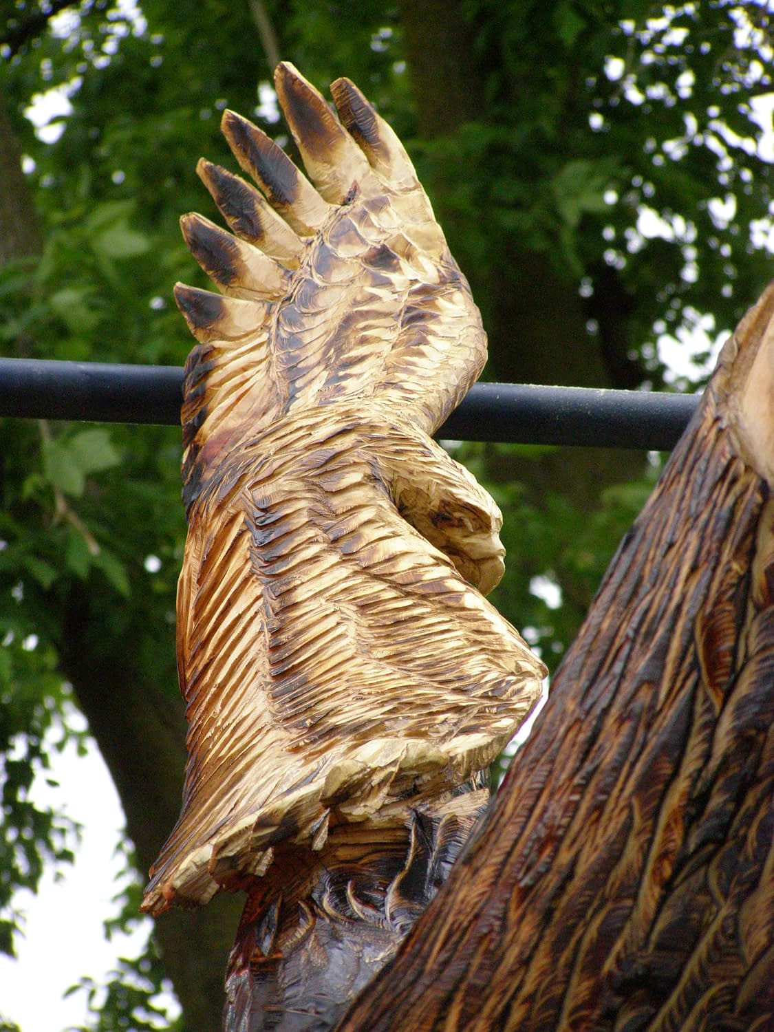 Carving, Chainsaw, Hawk