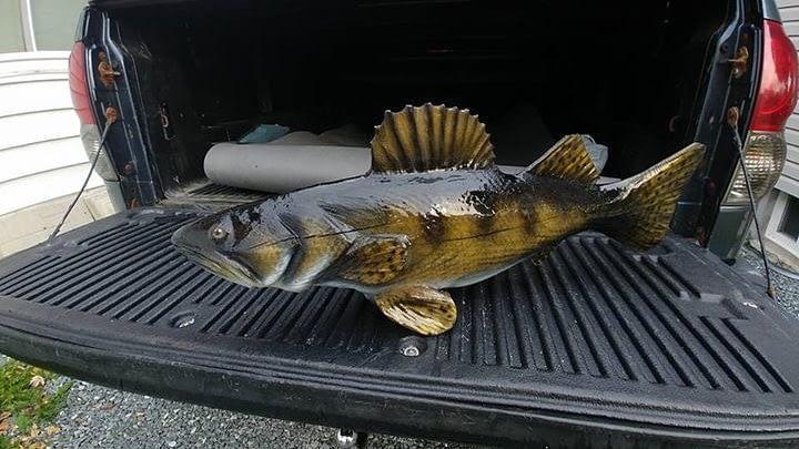 Chainsaw, Pike, Fish
