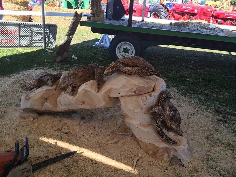 Carving, Turtles, Sea Turtles